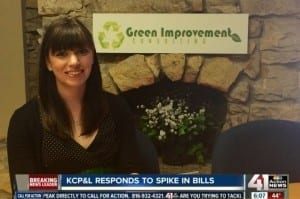 Green Improvement Consulting on NewsChannel 41